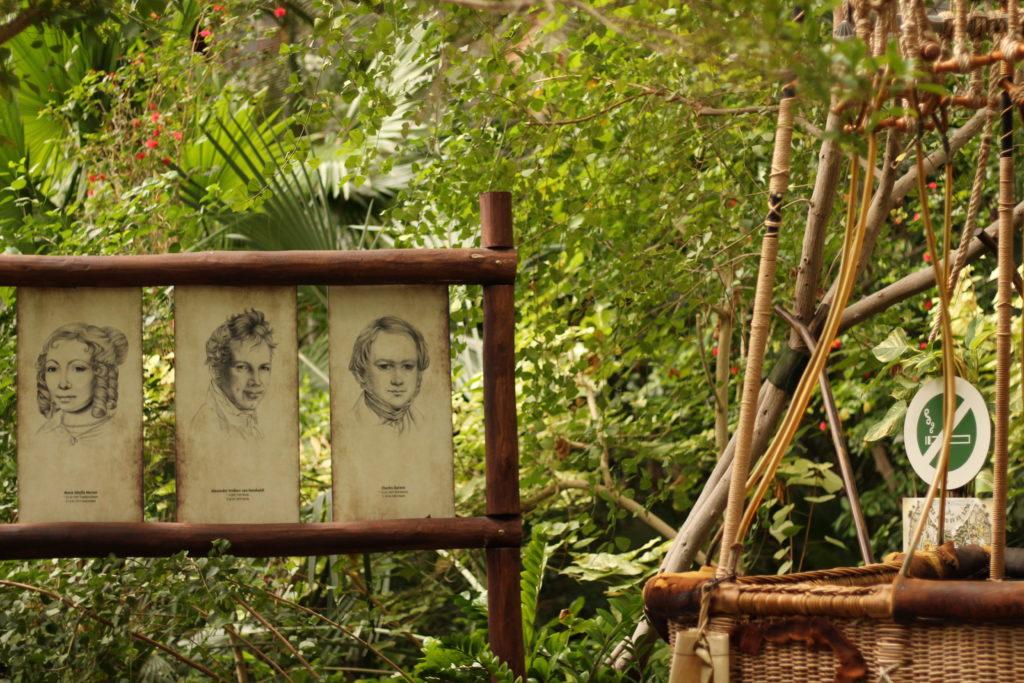 Der Entdeckungspfad im Tropical Islands