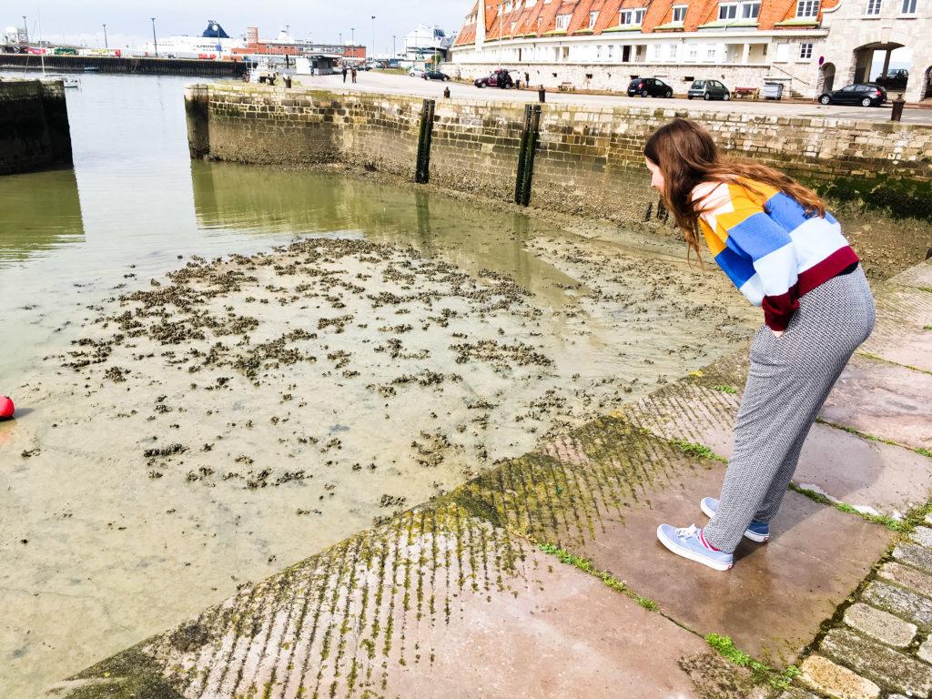 Leeres Hafenbecken in Calais