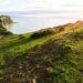 Für die Umwelt: mehr Nachhaltigkeit im Alltag