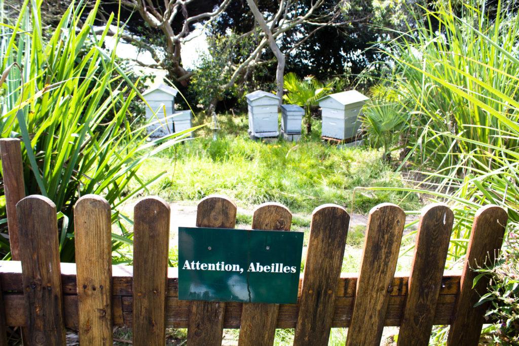 botanischer Garten in Vauville